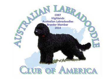 ALCA2014Logo logo area