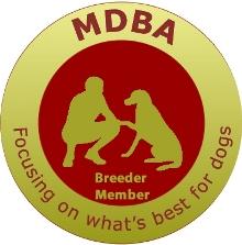 MDBA_breeder NEW logo
